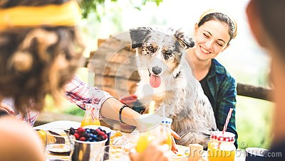 Happy friends having healthy pic nic breakfast at countryside farm house - Young people millennials with cute dog having fun