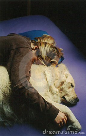 Let Sleeping Dogs Cuddle