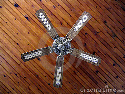Country house ceiling fan