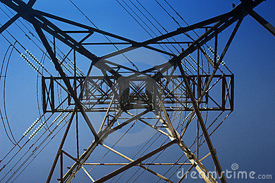 Power Cables #7