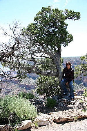 Teen in tree