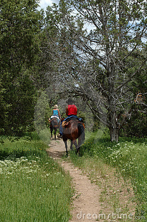 Horse riders on the mountain trail