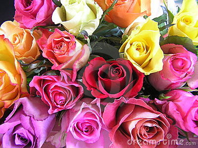 Display of multicolored roses