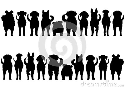 Dogs breed border silhouette set
