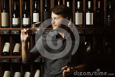 Sommelier looks at white wine in glass in cellar