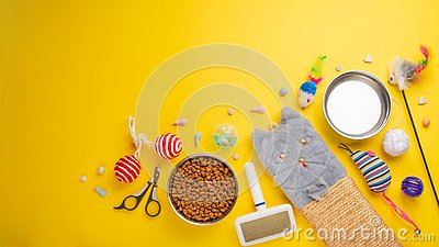 Pet, cat, food and accessories of cat living flat lay, with space for design, on a yellow background. Banner, cat background