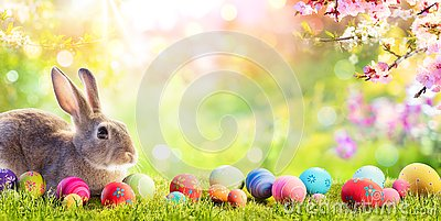 Adorable Bunny With Easter Eggs