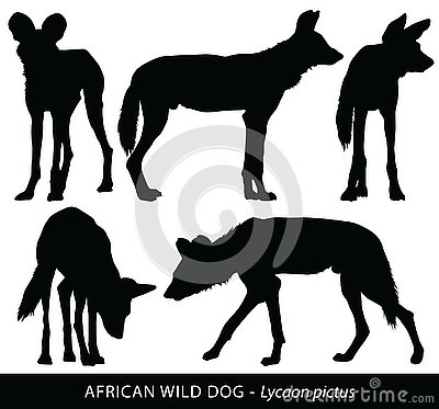 Vector silhouettes of African Wild Dogs
