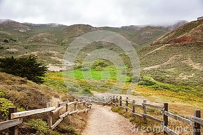 Valley road in the Headlands area on a foggy summer day, Golden Gate National Recreation Area, Marin County, California