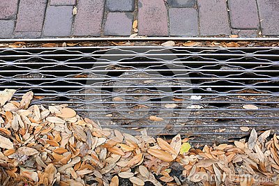 Steel Drainage Grate with Bricks and Leaves