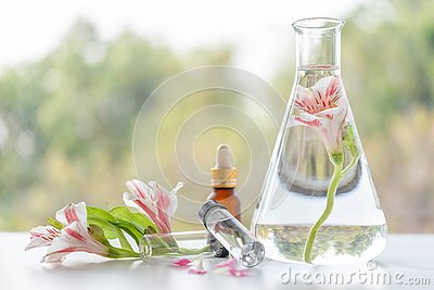 Close up bottle of essential oils with fresh flower. Lab research for scent extract for the new skincare product