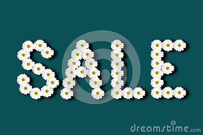 Inscription sale lined with chamomile flowers on a colored background
