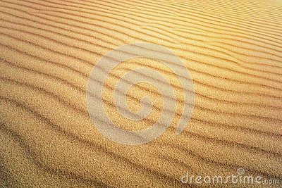 Sand Texture. Brown sand. Background from fine sand. Sand background. yellow dune in the sun. The sun shines on the sand