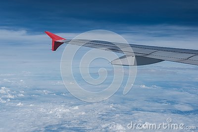 stock image of wing
