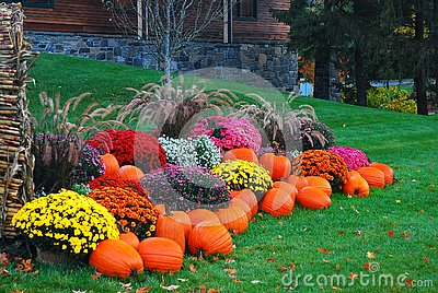 An autumn display in New England