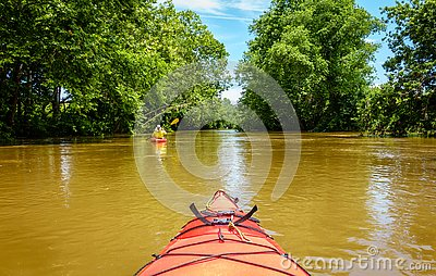 Kayaking on a creek in Central Kentucky
