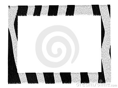Stylish picture zebra pattern frame isolated