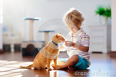 Child playing with cat at home. Kids and pets