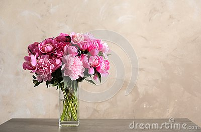 Fragrant peonies in vase on table against color background. Beautiful spring flowers