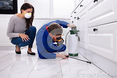 Pest Control Worker Spraying Pesticide On Wooden Cabinet