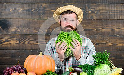 Buy vegetables local farm. Homegrown harvest concept. Typical farmer guy. Farm market harvest festival. Man mature