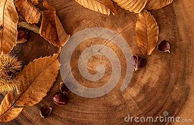 seasonal fall background with leaves, chestnuts and a log