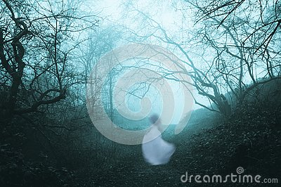 A dark, spooky forest with a ghostly woman in a white dress, on a foggy winters day. With an old artistic vintage edit