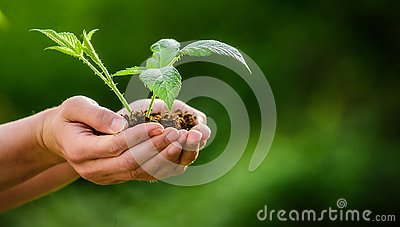 Earth day. ecology environment concept. happy earth day. Eco living. farming and agriculture. Gardening. new life birth
