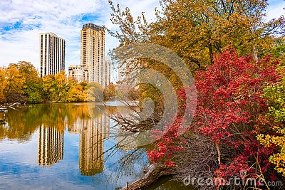 Colorful Trees and Plants surrounding North Pond in Lincoln Park Chicago during Autumn