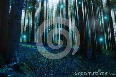 Magic surreal forest landscape, dark gloomy fairytale forest with fireflies and lights, mysterious moody forest