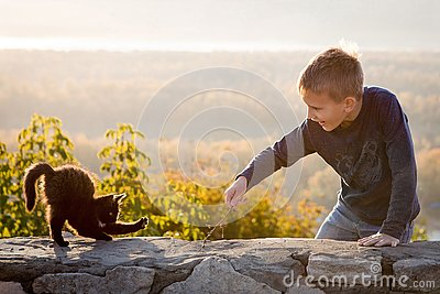 A child plays with a kitten. Fun photo. Communication with animals. Joyful boy. Autumn bright day. Beautiful landscape in the