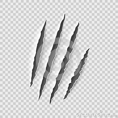 Claw marks. Claws scratches, cat and tiger, lion and bear animals paws attack tracks. Halloween monster, horror vector