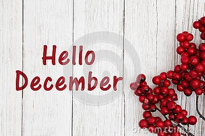Hello December text with red berry branch