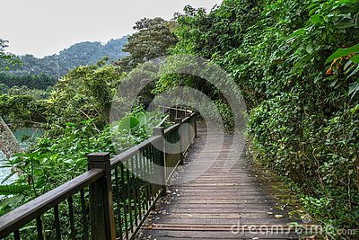 The walk way from nature wood for walk in sun moon lake at taiwan