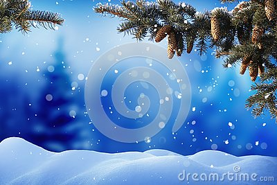 Christmas background with fir tree branch and cones .Merry Christmas and happy new year greeting card
