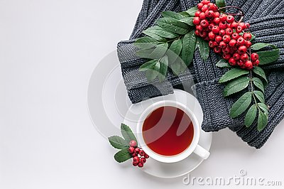 Ceramic teacup on white served table. Herbal tea in porcelain mug with saucer. Knitted sweater, rowan branch and rowanberry flat