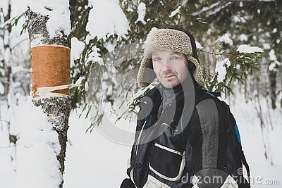 Pensive male forester wonders who could remove the bark from a birch trunk in a winter forest.