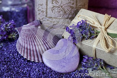Purple Fragrant Lavender Blossom Still Life