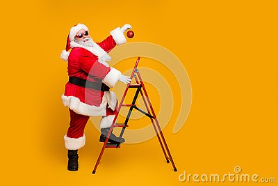 Full size profile side photo of funky funny santa claus decorate christmas tree climb stairs want hang x-mas ornament on