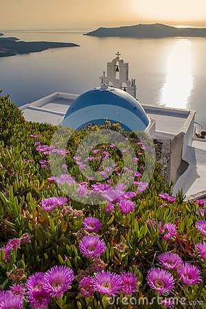 Blue-roofed church surrounded by flowers