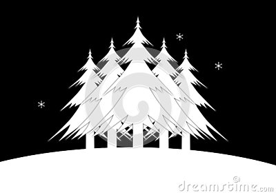 Five Christmas Trees standing a snowy landscape. The night sky is filled with stars