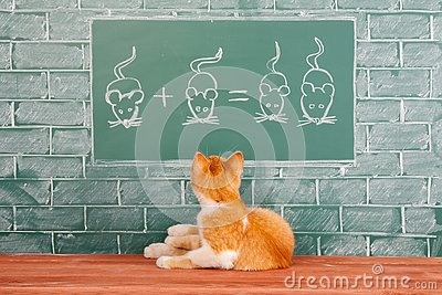Educational funny concept about red Cat studied mathematics example of addition of mice