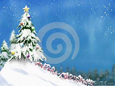 Christmas trees and decoration light on snow with blurred of tree in blue sky