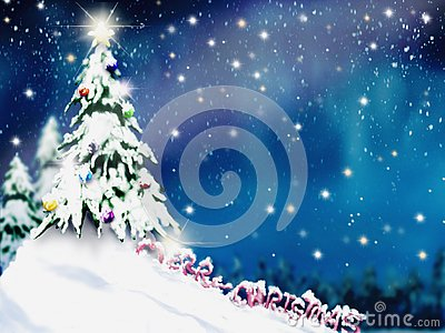 Christmas trees and decoration light on snow with blurred of tree in night sky