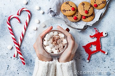 Hot cocoa with marshmallow in in woman hand. Christmas gingerbread, decorated red nosed reindeer cookies.