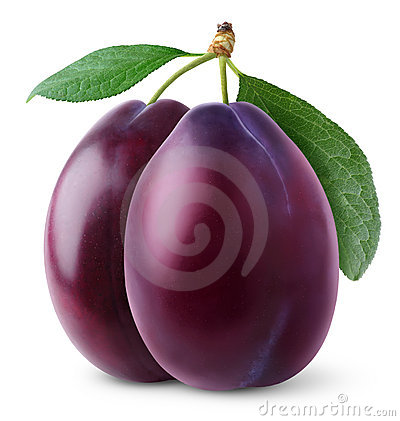 Isolated plums