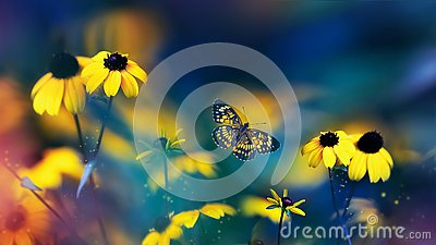 Small yellow bright summer flowers and beautiful butterfly  on a background of blue, pink and green foliage in a fairy garden.