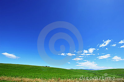 Blue Sky and Green Field