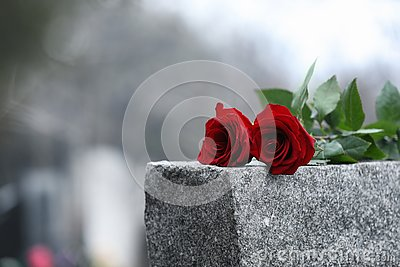 Red roses on grey granite tombstone. Funeral ceremony