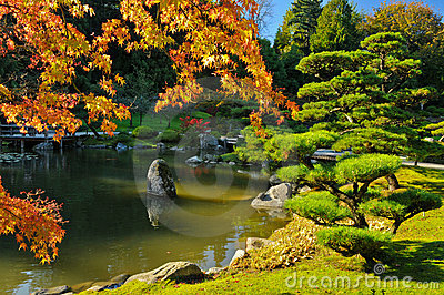Pond and Fall Foliage in Japanese Garden